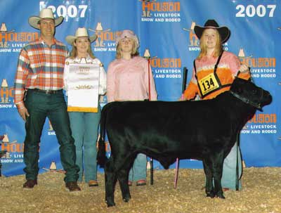 Dexter cattle shows and awards